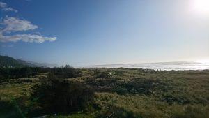 Gold Beach3